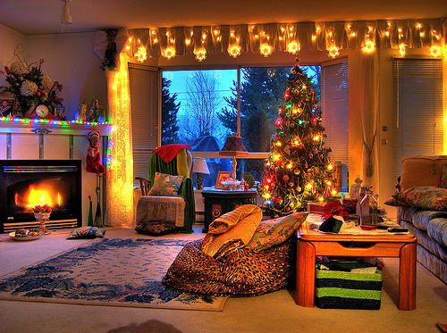 christmas, christmas tree, feeling, holiday, holidays, light