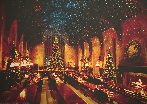 beauty, christmas, christmas tree, christmas trees, glorious, great hall, harry potter, hogwarts, lights, stars