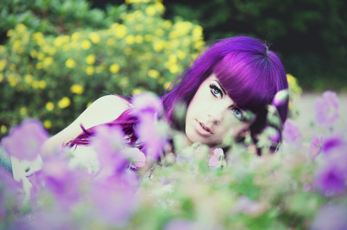 flowers, girl, medow, pretty, purple, spring