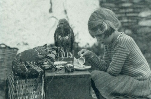 b&w, beach, bird, black and white, epic, girl, hawk, lobster, ocean, old photograph, sea, shore, tea, vintage, vintage photo, vintage photograph