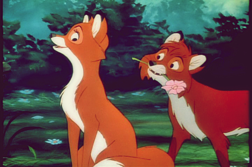 http://favim.com/orig/201107/03/animal-disney-flowers-fox-nature-own--Favim.com-92511.jpg