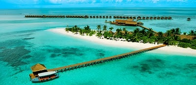dream, maledives, palm, paradise, sand, sea