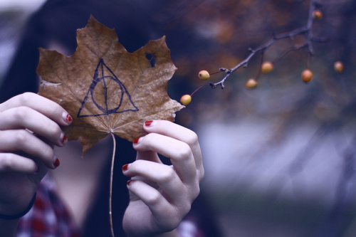 autumn, bokeh, deathly hallows, fall, girl, hands