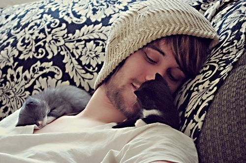 adorable, boy, cat, cats, cute, kitten, love