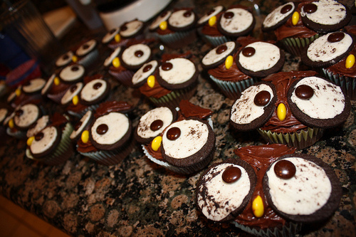 animal, animal cupckaes, cupcakes, cute, food, owl