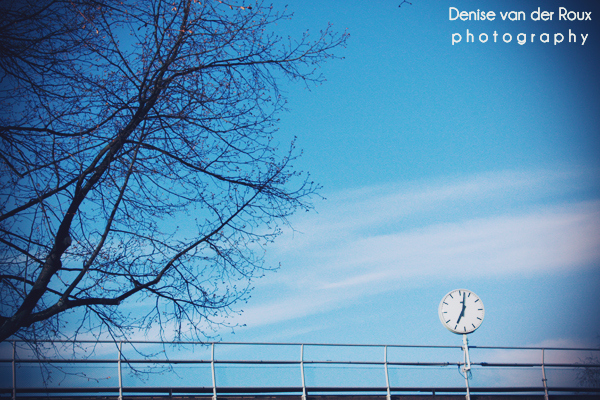 blue, branches, clock, clouds, cold, frozen