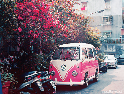 bmw, car, combi, cute, flowers