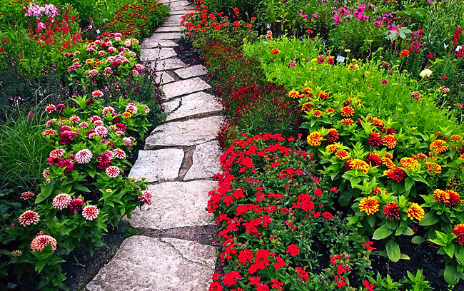 beautiful, bright, flowers, garden, green