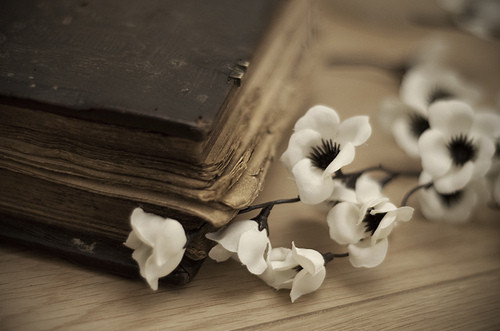 beautiful, book, cute, fashion, flowe