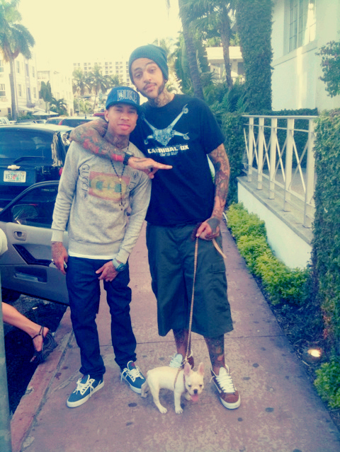 dog, tattoo, travic mccoy, travie, tyga
