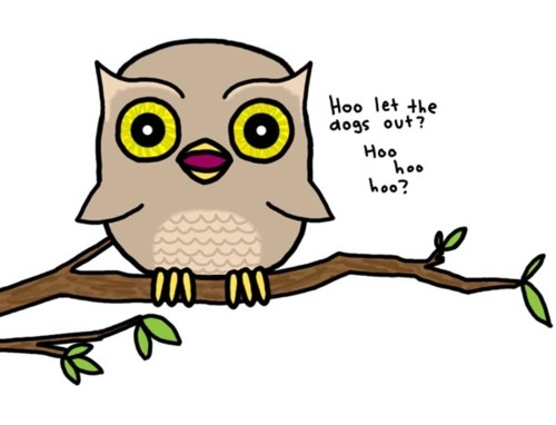 funny owl drawing - photo #2