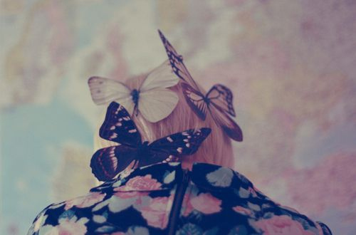 blonde, butterflies, floral, girl, insects, nature, pretty, vintage