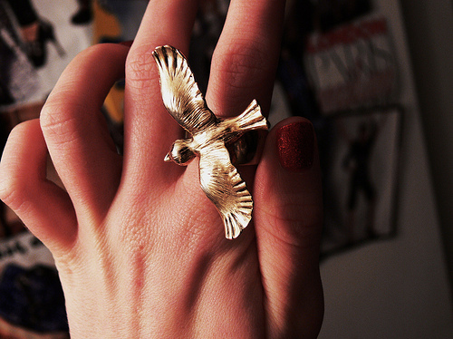 bird, gold, hand, nails, red