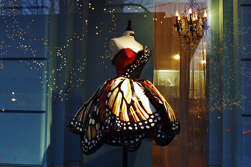 amazing, butterfly, dream, dress, magical